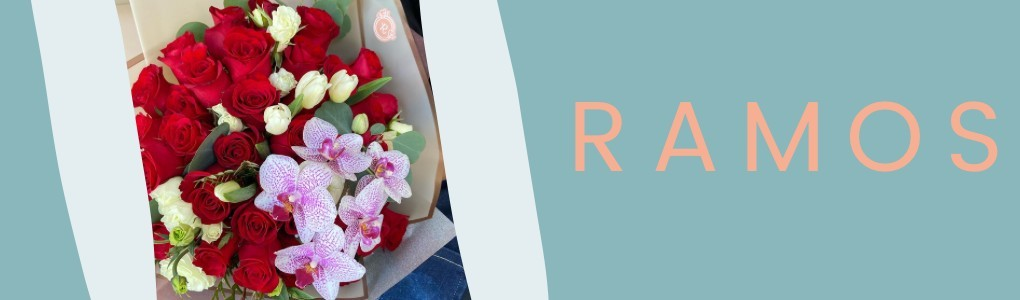 Rumantyk | Ramos